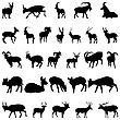 Collection Of Deer And Goats Silhouettes.