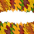 Colored Autumn Leaves Border For Your Text stock photography