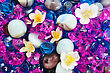 Colorful Stones And Flowers As A Background. stock image
