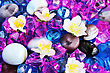 Colorful Stones And Flowers As A Background. stock photo