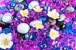 Colorful Stones And Flowers As A Background. stock photography