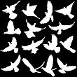 Concept Of Love Or Peace. Set Of Silhouettes Of Doves. Vector Illustration