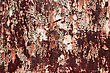 Corrosion Grunge Surface With Paint stock image