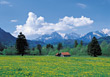 Germany Countryside in Spring stock photo