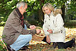 Couple Collecting Chestnuts In The Woods stock photography