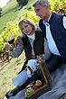 Couple Having Picnic In The Vineyard stock image
