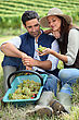 Couple In Field Eating Grapes stock photography
