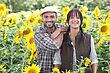 Couple Of Farmers In A Sunflowers Field