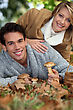 Couple Picking Wild Mushrooms stock photography