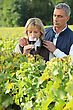 Couple Tasting Wine In A Vineyard