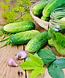 Cucumbers In A Glass Jar And On The Table, Garlic, Tarragon, Dill, Cherry Leaves And Currants On A Wooden Boards Background