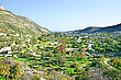 Cyprus Landscape With Gardens,mountain Village, Paths