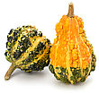 Fall - Autumn Decorative Pumpkin Isolated On White Background. Halloween And Harvest Symbol stock image