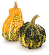 Decorative Pumpkin Isolated On White Background. Halloween And Harvest Symbol stock photo