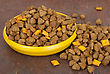 Dog Food In Bowl On Wood Background stock photo
