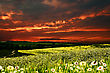 Dramatic Sunset Over Hilly Meadow, Environmental Backgrounds stock photo