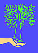 Drawing Of The Hand Holding Tree stock illustration