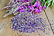 Dried And Fresh Flowers Of Fireweed Against The Wooden Board stock photo