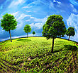 Earth Of Trees. Abstract Natural Backgrounds stock illustration