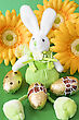 Easter Bunny Sit On Green Background With Yellow Flowers stock image