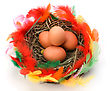 Easter Egg In Nest Isolated On White Background stock photography