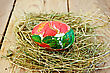 Easter Egg With A Pattern Of Red Flowers And Green Leaves In The Hay On The Background Of Wooden Boards stock photography