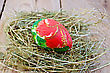 Easter Egg With A Pattern Of Red Flowers And Green Leaves In The Hay On The Background Of Wooden Boards