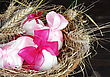 Easter Eggs In Nest With Wheat On Dark