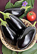 Eggplants Of Black Colour In A Basket stock photo