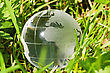 Environment Or Ecology Concept, Glass Globe In The Grass stock image