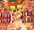 Fall Socks stock photo