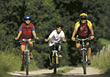 Family on Biking Trip stock photo