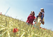 Family Walking Through Field, Daughter Sits On Shoulder stock image