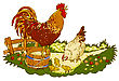 Farm Animals - Rooster, Hens & Chicks
