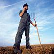 Pitchfork Farmer with Cell Phone on Field stock photography