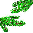 Adorned Fir Green Branches Isolated On White Background stock illustration