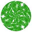 Fir Green Branches Pattern On White Background stock illustration