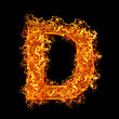 Dreamy Fire Letter D On A Black Background stock image