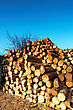 Firewood Combined In A Woodpile stock photo