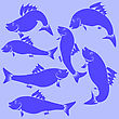 Fish Blue Silhouettes Isolated On Blue Background
