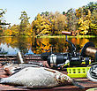 Fishing Tackle And Caught Fish On The Table Autumn Day stock photo