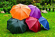 Five Colorful Umbrellas On The Grass stock photo