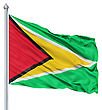Flag Of Guyana With Flagpole Waving In The Wind