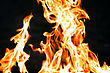 Flames From A Fire On A Black Background. Picture. stock photography
