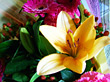 Floral Arrangement & Yellow Lily stock image