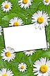 Floral Background With White Blank Card For Text stock image