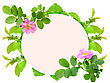 Floral Ellipse Frame With Pink Dog-rose Flowers And Green Leaf Nature Art Ornament Template For Your Design Close-up Studio Photography