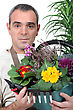 Florist Holding Flower Arrangement stock photography