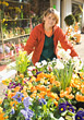 Florist with Cart of Blooming Flowers