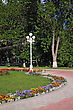 Flowerses In Summer Town Park stock image